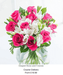 flying-flowers-next-day-flowers-courier-delivery-elegant-rose-and-freesias1