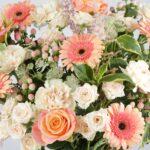 Pet Friendly Flower Subscription Box